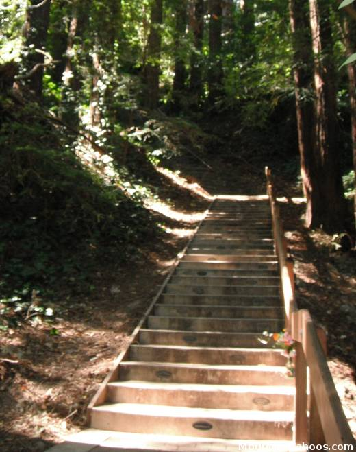 Mill Valley CA: DIPSEA Stairs
