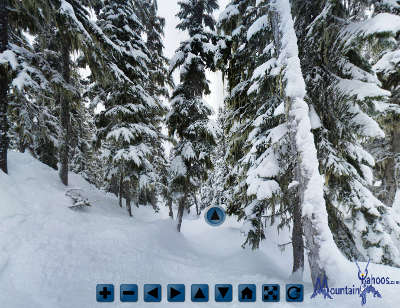 Whistler Blackcomb: Davies tree run